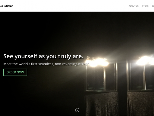 True Mirror Website